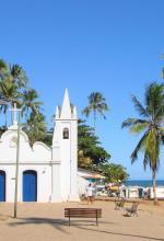 Viajar para Praia do Forte